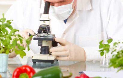 Ciencia de Alimentos EaD